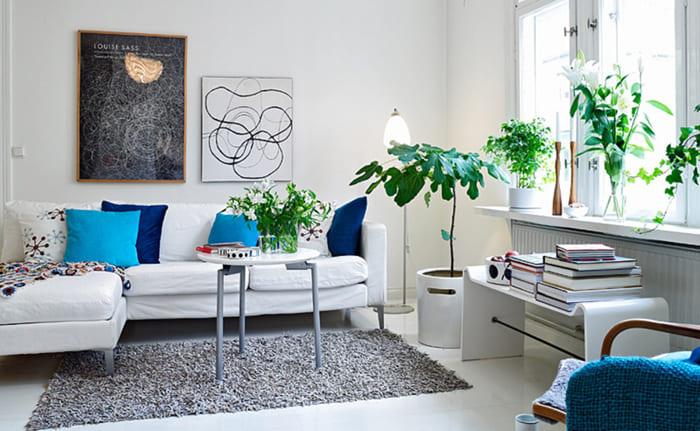 Светлые гостиные прекрасно оттеняются растениями с тёмно-зелёным цветом листьев