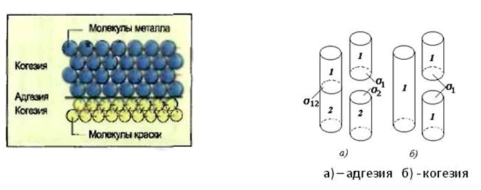 Схематическое изображение эффекта адгезии и когезии