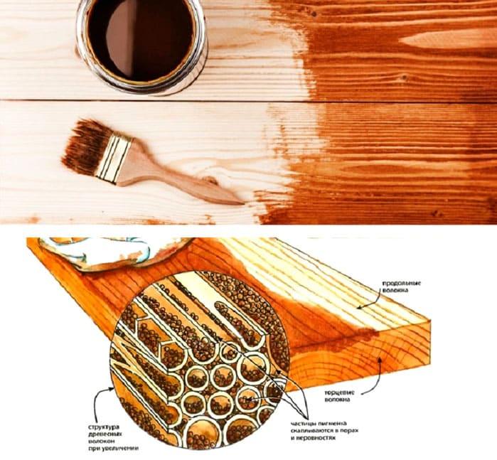 Проникновение морилки в структуру древесины