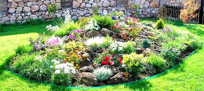На альпийской горке должны расти те растения, которые выдержат более засушливый микроклимат и некоторое возвышение над уровнем грунта