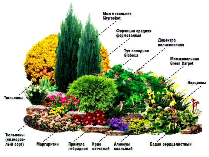 Есть много готовых схем клумб. Вопрос, подходят ли растения для выращивания именно на вашем участке